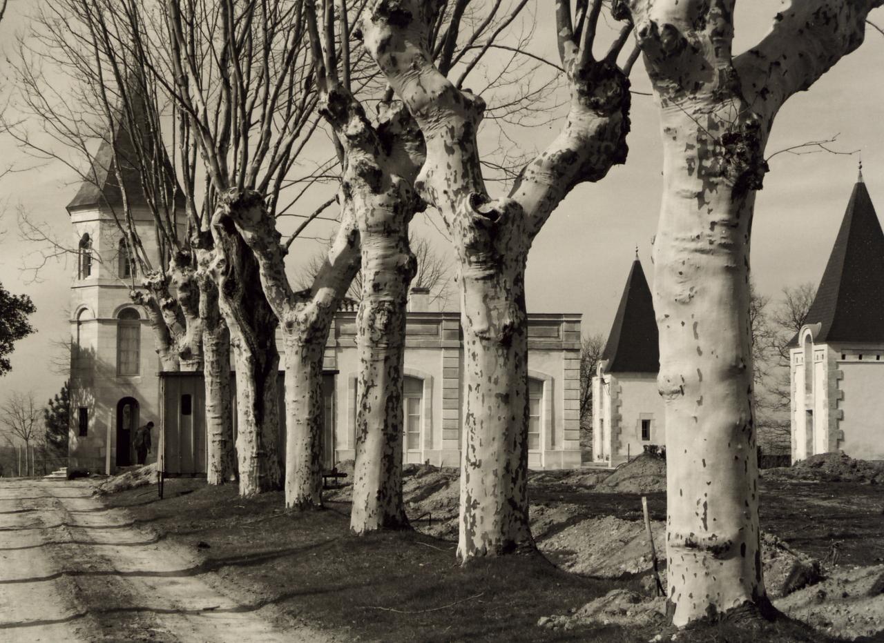 Les Eglisottes, les deux pigeonniers de la Brande-Bergère