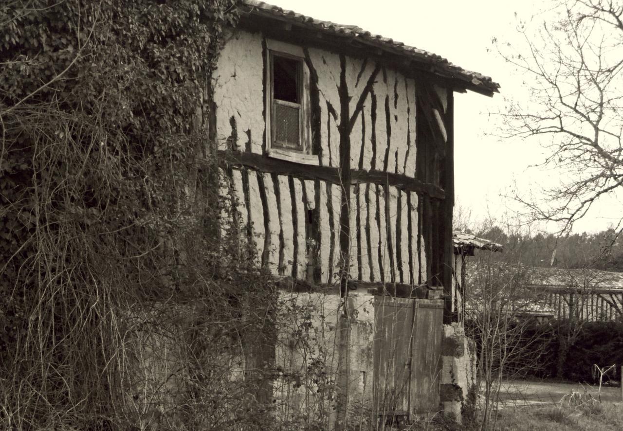 Saint-Seurin-sur-Isle, une maison en torchis