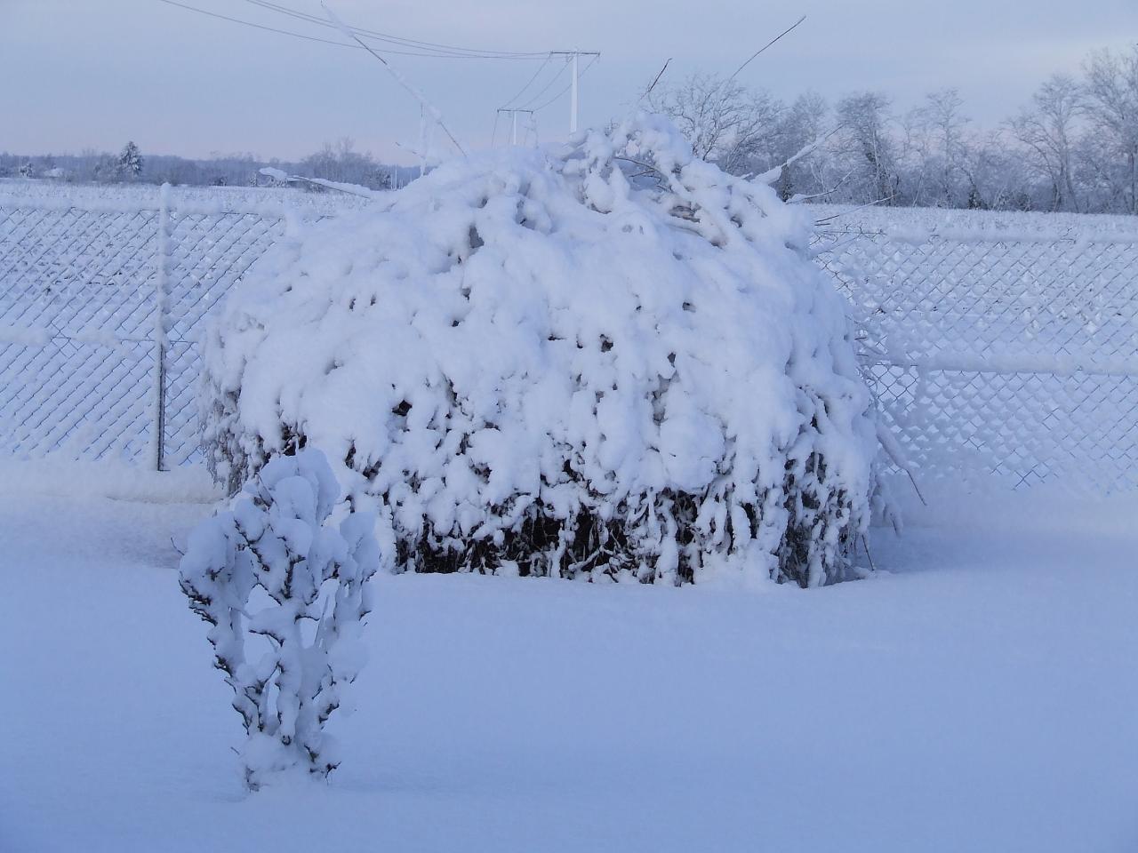 qui a dit qu'il neige jamais en Gironde?