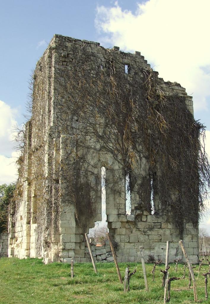 Galgon, les vestiges de l'église des Templiers, au lieu-dit Fougères