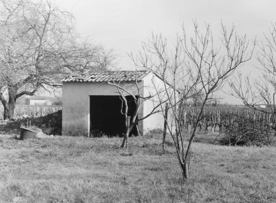 Saint-Laurent-des-Combes, une cabane de vigne.