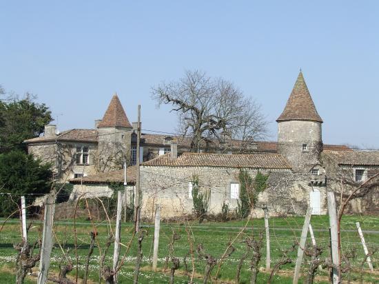 Grézillac, une autre vue du château Reynier,