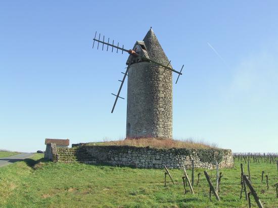 Saint-Aubin-de-Branne, le moulin à vent Lescour.