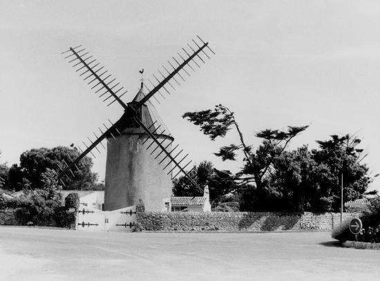 Saint-Martin-de-Ré, le moulin de Beillère