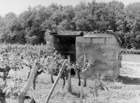 Génissac, une petite maison de vigne.
