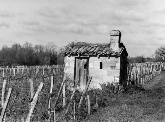 Arveyres, une petite maison de vigne vers Tillède