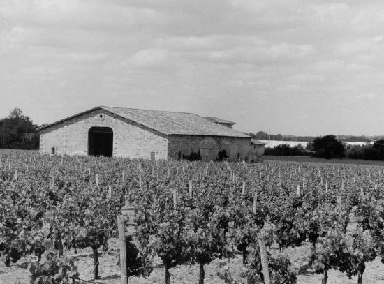 Vayres, un hangar de vigne.