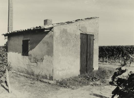 Saint-Christophe-des-Bardes, une cabane de vigne au lieu-dit Rocheyron