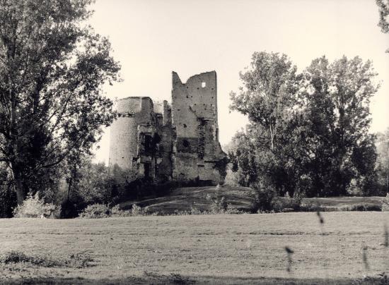Machecoul, les ruines du château de Gilles de Ré.