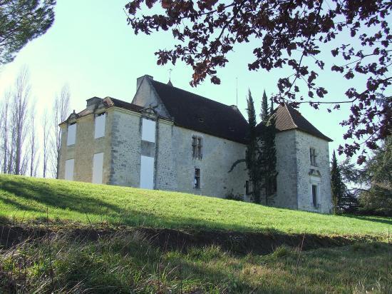 Saint-Aubin-de-Branne, le château l'Heyrisson.