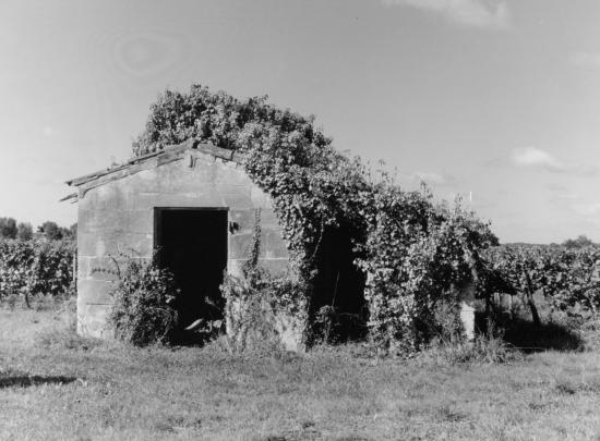 Saint-Germain-du-Puch, une petite maison de vigne.