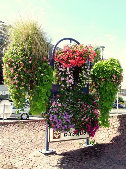 Fleuraison du carrefour de l'avenue de la Ballastière et de l'avenue G. Pompidou.