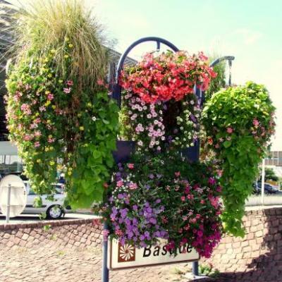 Les jardins de Libourne