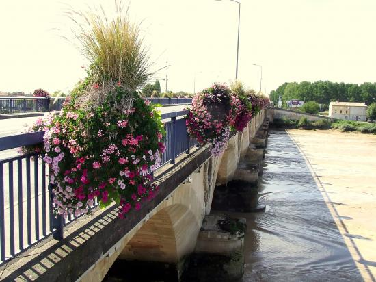 Vue générale du pont à marée descendante.