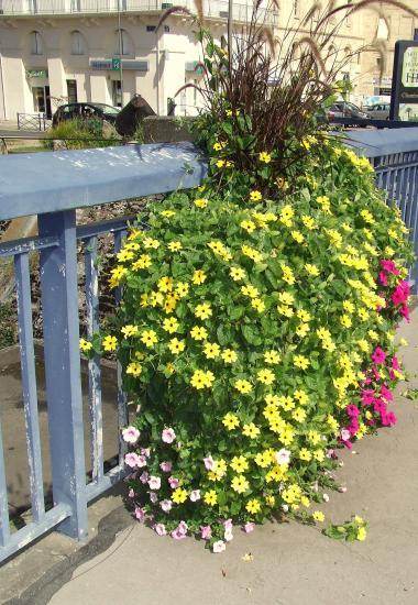 Sur le pont, une vasque fleurie.