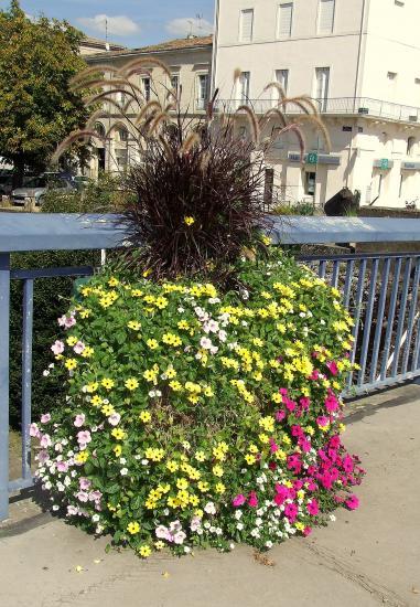 Pont sur la Dordogne: une vasque fleurie.